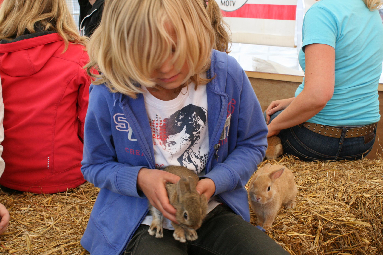Zuidenveld Zweeloo 2011 huisdierenkeuring